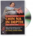 CHIN NA IN DEPTH